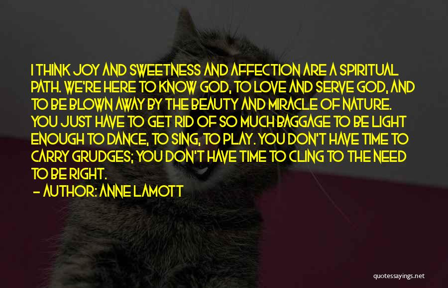 We Don't Have Enough Time Quotes By Anne Lamott