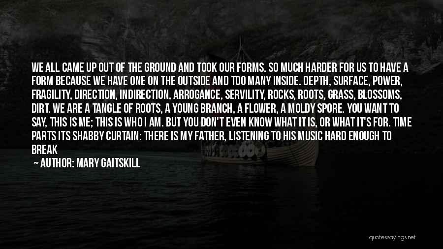 We Don't Have Enough Time Quotes By Mary Gaitskill