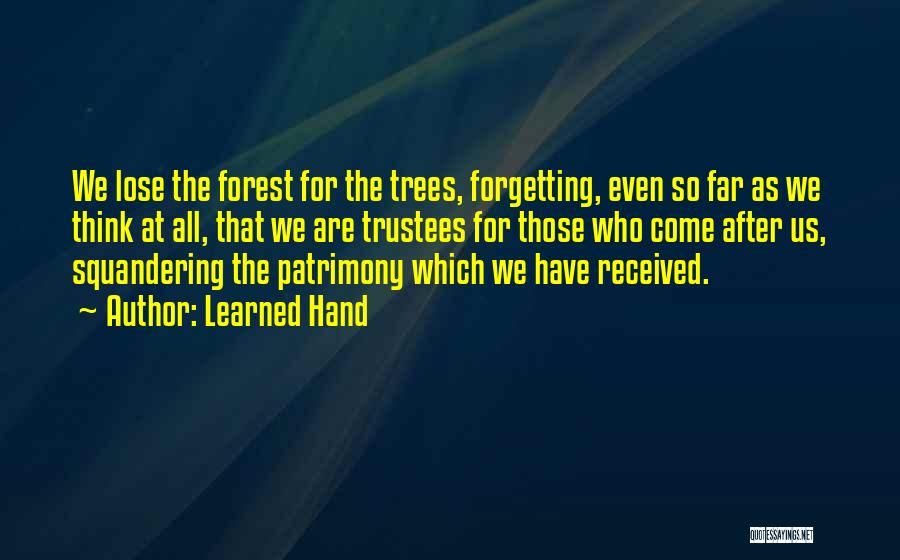 We Have Come So Far Quotes By Learned Hand