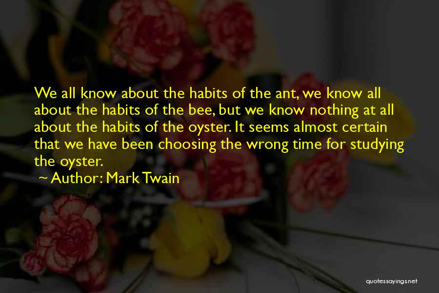 We Have Nothing But Time Quotes By Mark Twain