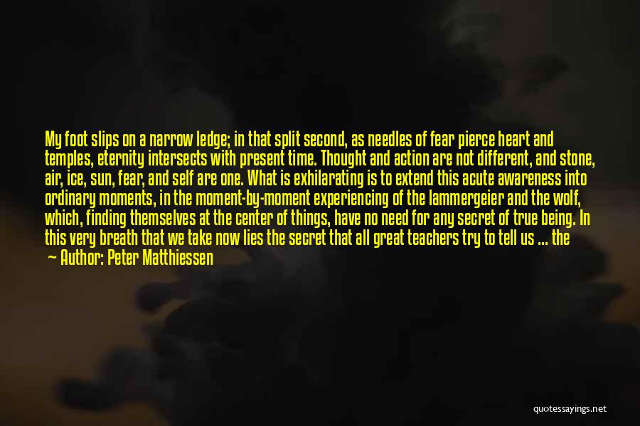We Have Nothing But Time Quotes By Peter Matthiessen