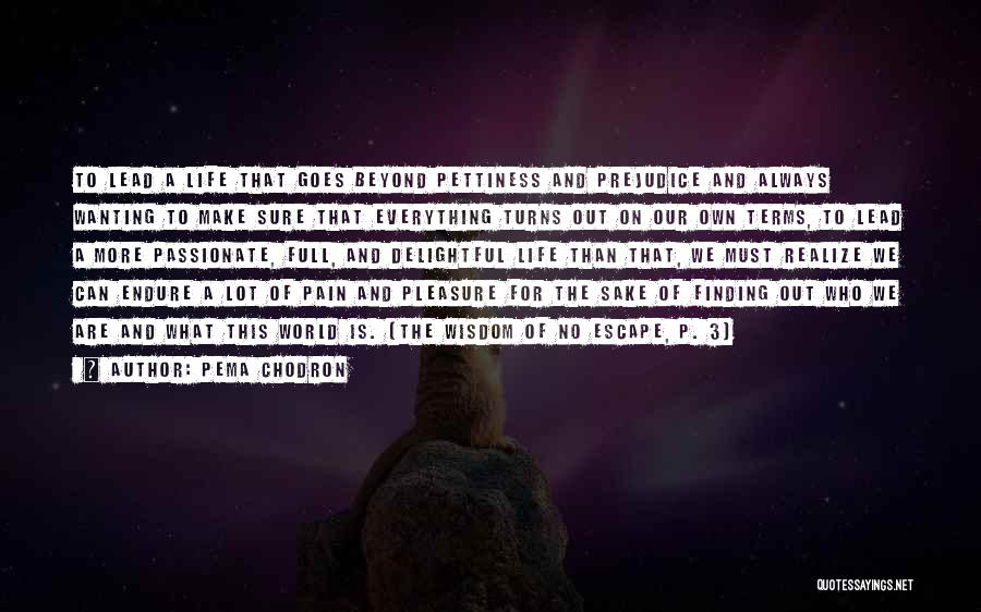 We Make Our Own Life Quotes By Pema Chodron