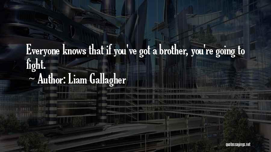 We May Fight Brother Quotes By Liam Gallagher