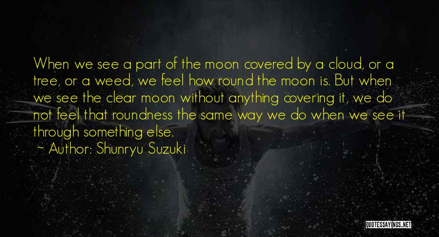 We See The Same Moon Quotes By Shunryu Suzuki