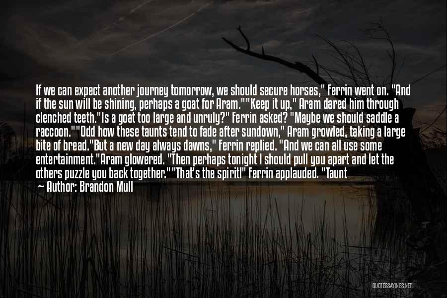 We Should Be Together Quotes By Brandon Mull