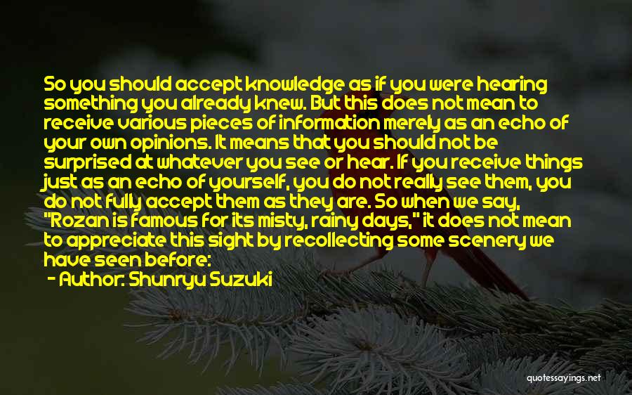 We Should Just Be Friends Quotes By Shunryu Suzuki