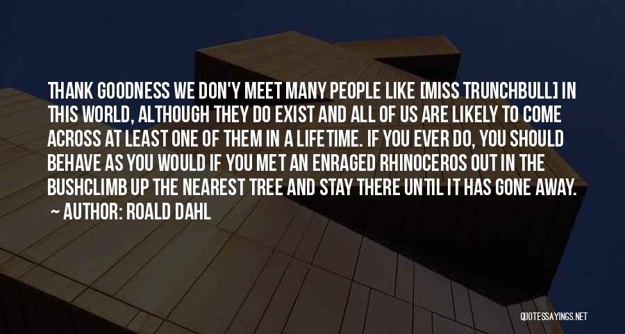 We Should Meet Quotes By Roald Dahl