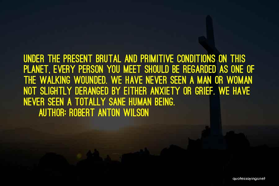 We Should Meet Quotes By Robert Anton Wilson