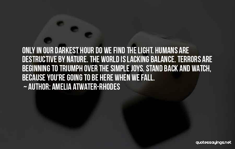 We Stand By You Quotes By Amelia Atwater-Rhodes