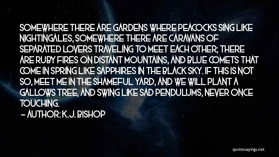 We Will Never Meet Quotes By K.J. Bishop