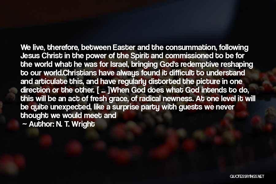 We Will Never Meet Quotes By N. T. Wright