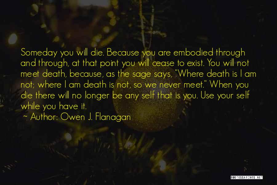 We Will Never Meet Quotes By Owen J. Flanagan