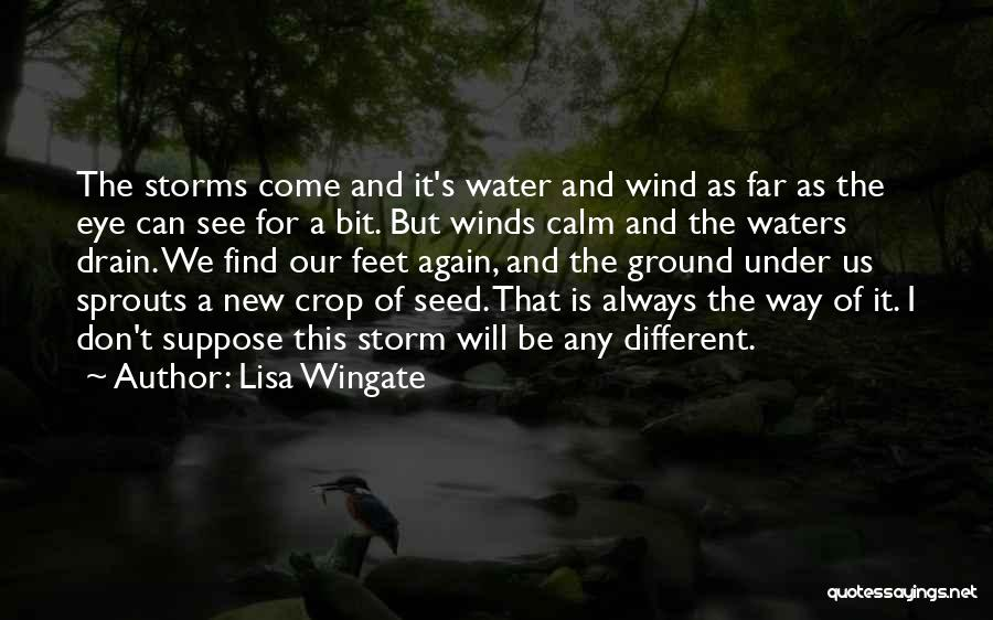 We Will See Again Quotes By Lisa Wingate