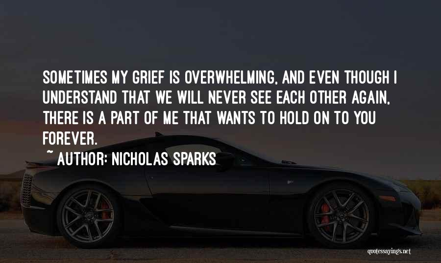 We Will See Again Quotes By Nicholas Sparks