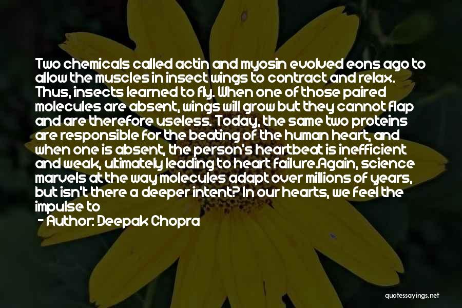 Weak Hearts Quotes By Deepak Chopra