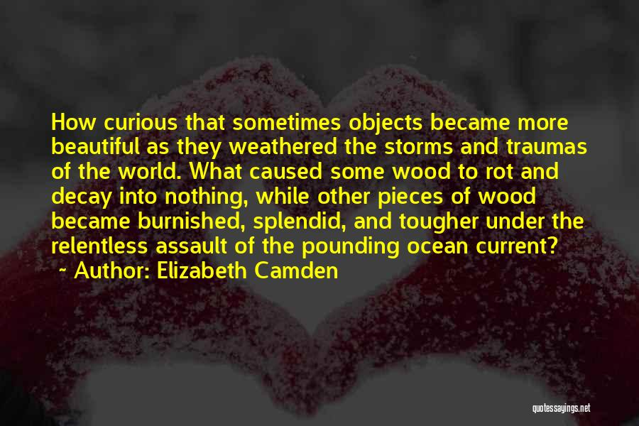 Weathered Wood Quotes By Elizabeth Camden
