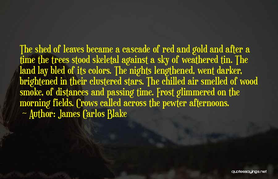 Weathered Wood Quotes By James Carlos Blake