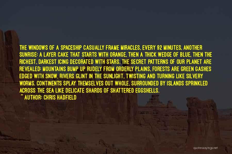 Wedge Quotes By Chris Hadfield