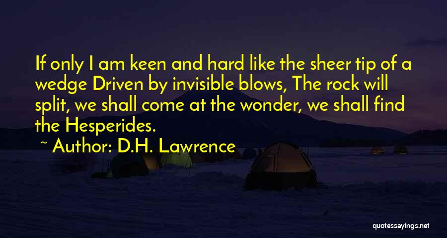 Wedge Quotes By D.H. Lawrence