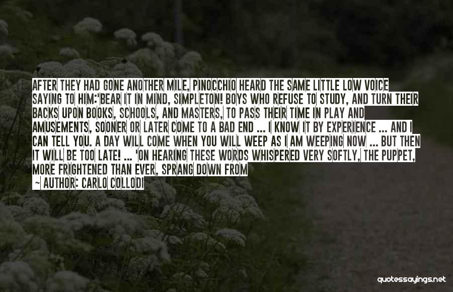 Weeping Boy Quotes By Carlo Collodi