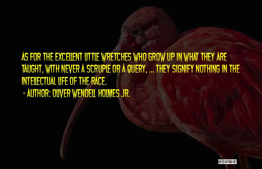 Wendell Quotes By Oliver Wendell Holmes Jr.