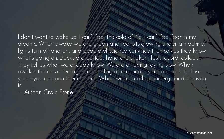 We're All Angels Quotes By Craig Stone
