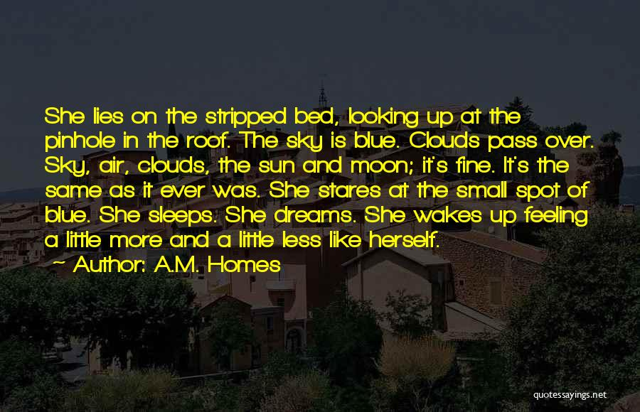 We're Looking At The Same Moon Quotes By A.M. Homes