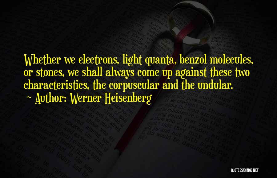 Werner Heisenberg Quotes 135915