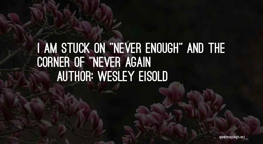 Wesley Eisold Quotes 555996