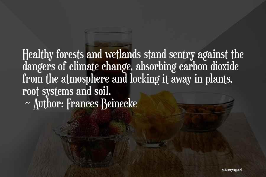 Wetlands Quotes By Frances Beinecke