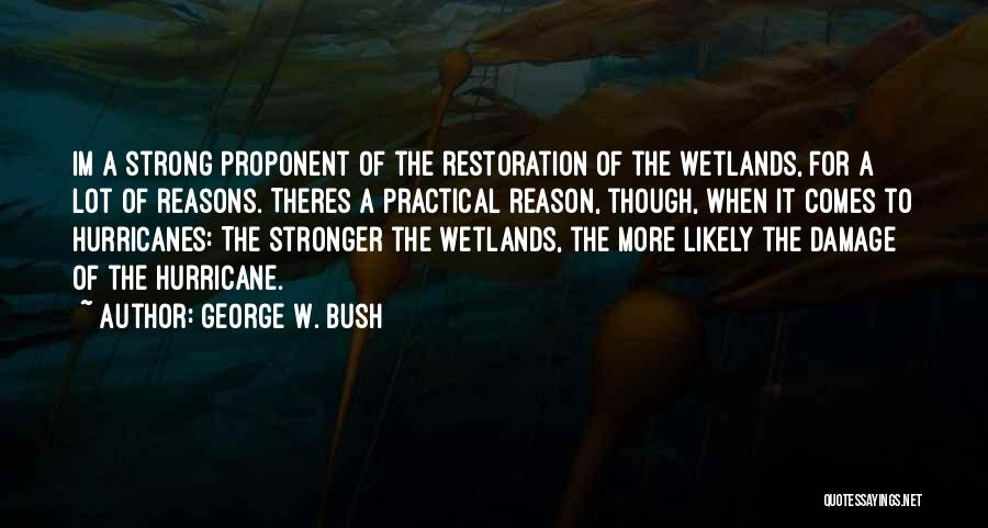 Wetlands Quotes By George W. Bush