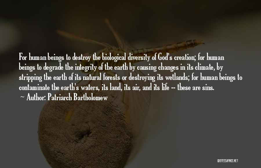 Wetlands Quotes By Patriarch Bartholomew