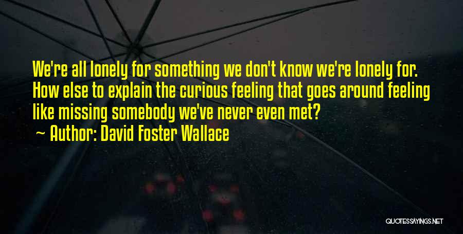 We've Never Met Quotes By David Foster Wallace