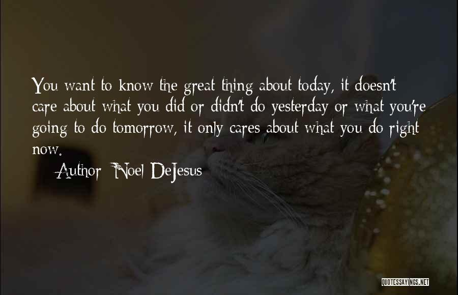 What Did You Do Today Quotes By Noel DeJesus