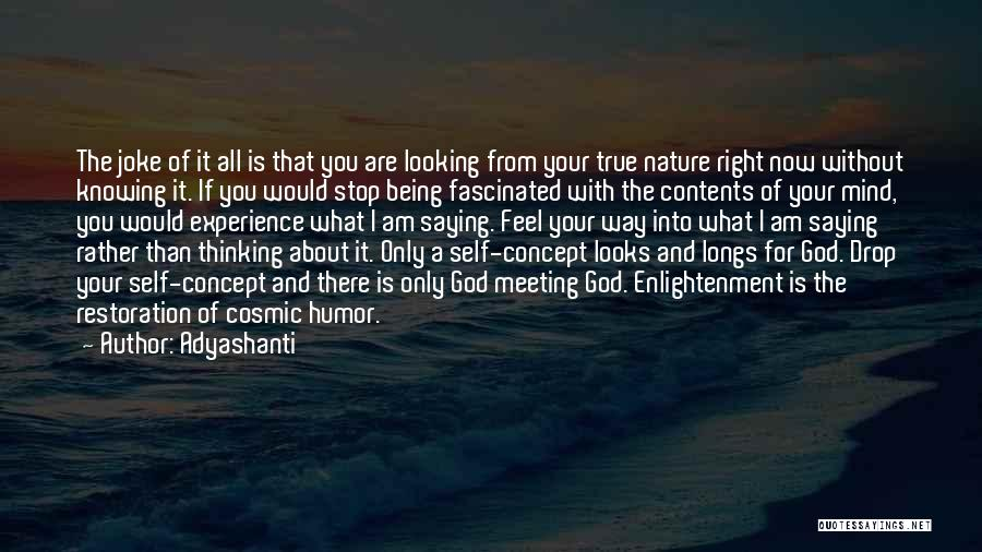 What I Feel Right Now Quotes By Adyashanti