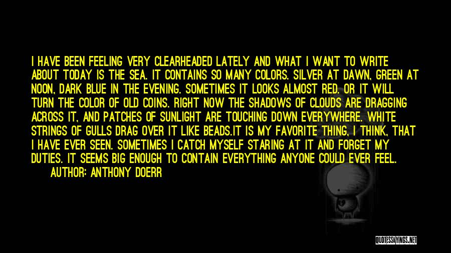 What I Feel Right Now Quotes By Anthony Doerr