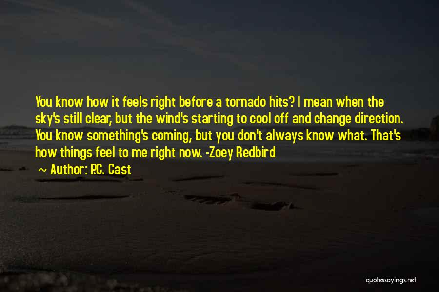 What I Feel Right Now Quotes By P.C. Cast