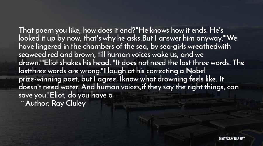 What I Feel Right Now Quotes By Ray Cluley