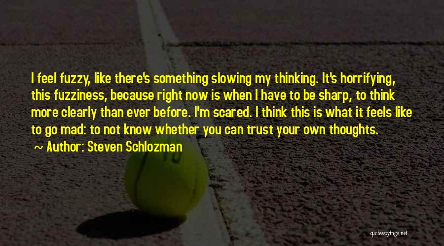 What I Feel Right Now Quotes By Steven Schlozman