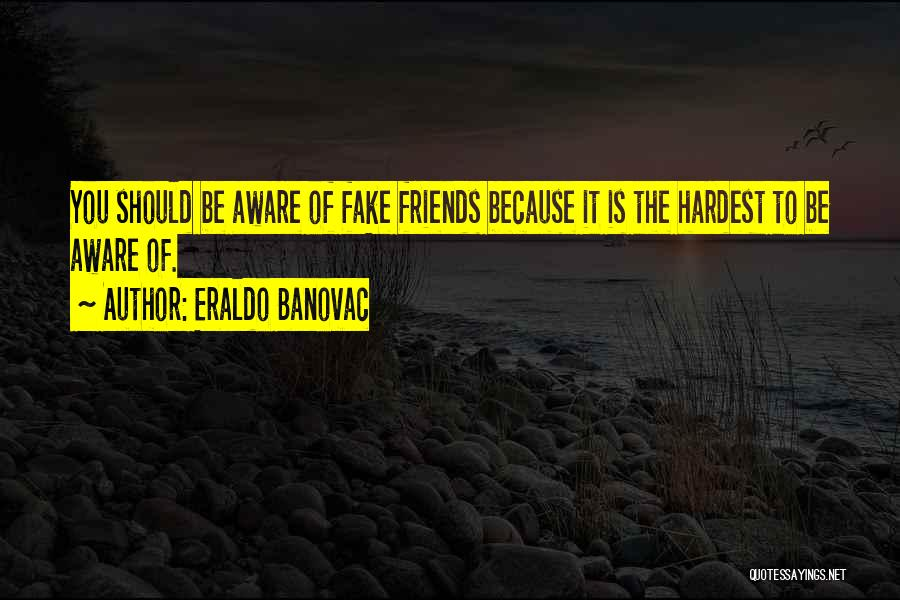 What Is Fake Friendship Quotes By Eraldo Banovac