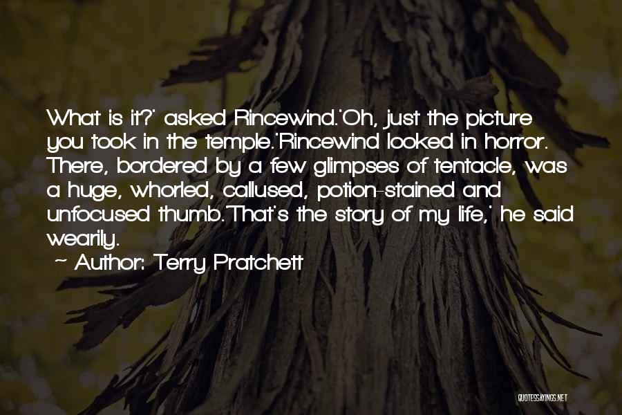 What Is My Life Quotes By Terry Pratchett