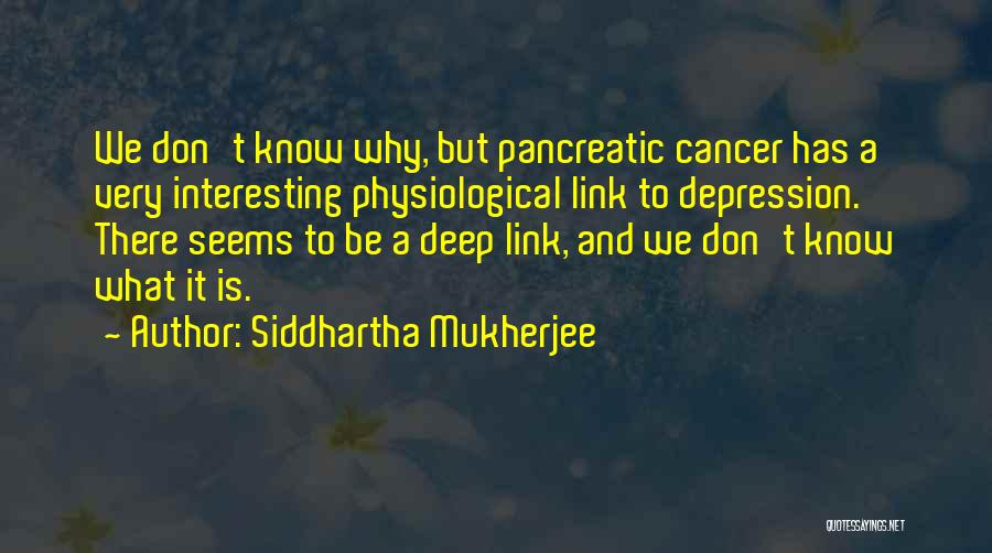 What It Seems Quotes By Siddhartha Mukherjee