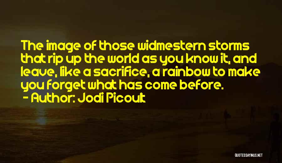 What The World Has Come To Quotes By Jodi Picoult