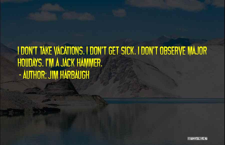 What We Did On Holiday Quotes By Jim Harbaugh