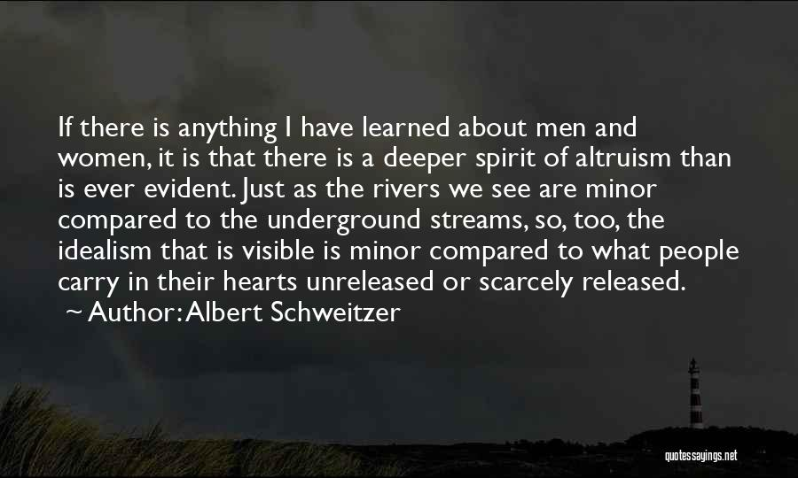 What We See Quotes By Albert Schweitzer