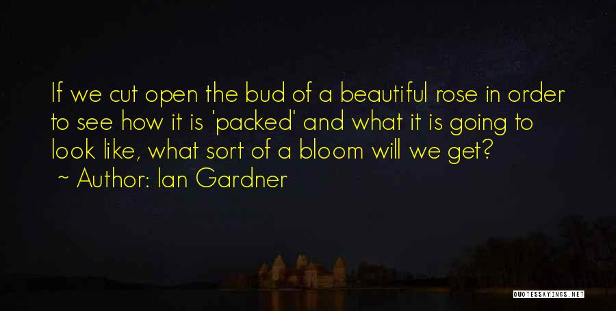 What We See Quotes By Ian Gardner