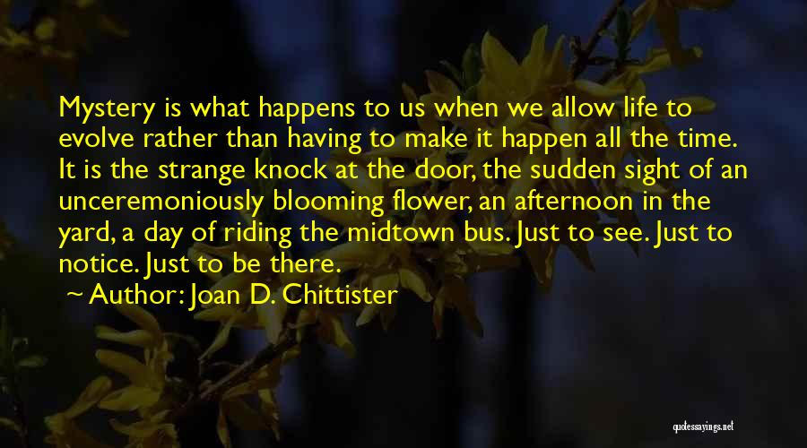 What We See Quotes By Joan D. Chittister