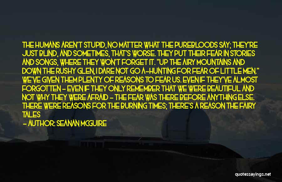 What We See Quotes By Seanan McGuire