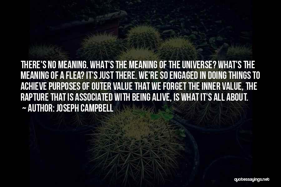 What We Value Quotes By Joseph Campbell