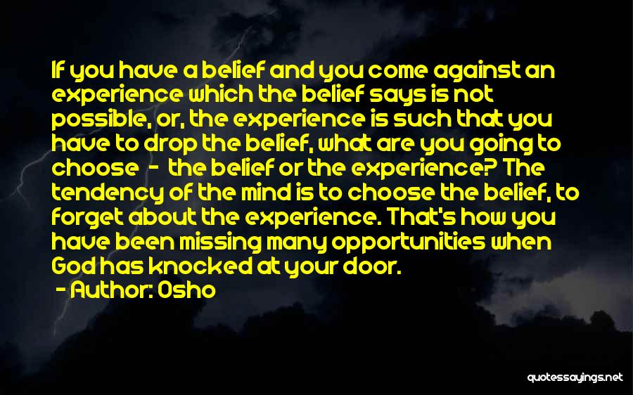 What You Are Missing Quotes By Osho